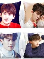 หมอนนอนเกาหลี Park Hyung Sik ขนาด 45X45 มี28ลาย