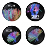ของที่ระลึกวง Muse เลือกด้านหลังได้ 4 แบบ เข็มกลัด, แม่เหล็ก, กระจกพกพา หรือ พวงกุญแจที่เปิดขวด 1 แพ็ค 4 ชิ้น [13]