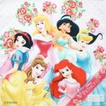 ผ้าเช็ดหน้า รวมเจ้าหญิงดีสนีย์ Disney Princesses 30x30cm Handkerchief