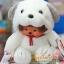ตุ๊กตาลิงมอนจิจิ-ยูเมะคิจิคุง 18 ซม.(Umekichi Monchhichi Kun) thumbnail 2
