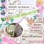 ดีท็อกซ์ คองกาเซีย thumbnail 17